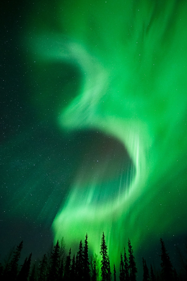 Green snakes from the Aurora lights.