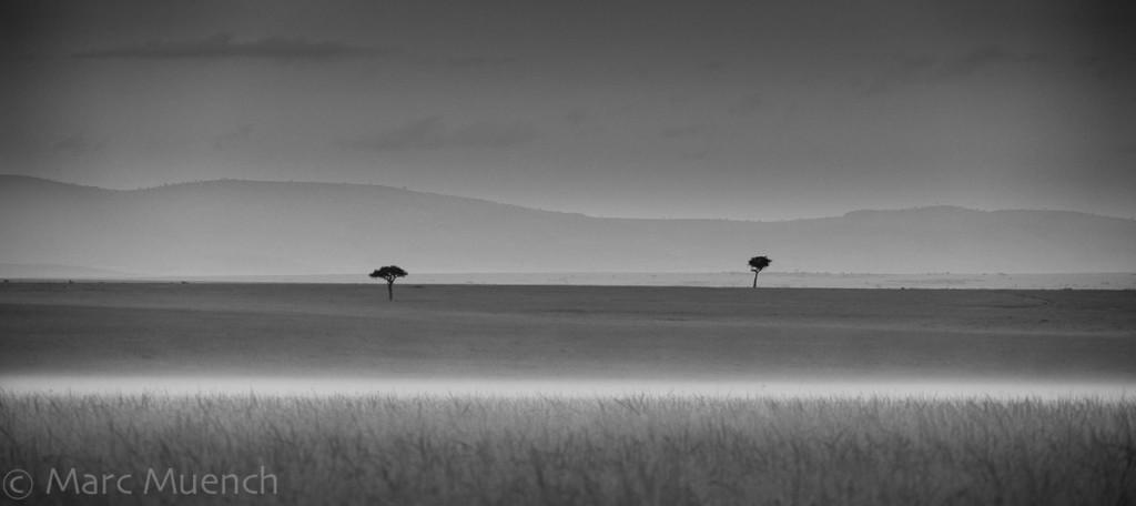 Maasai Mara National Resserve, Kenya