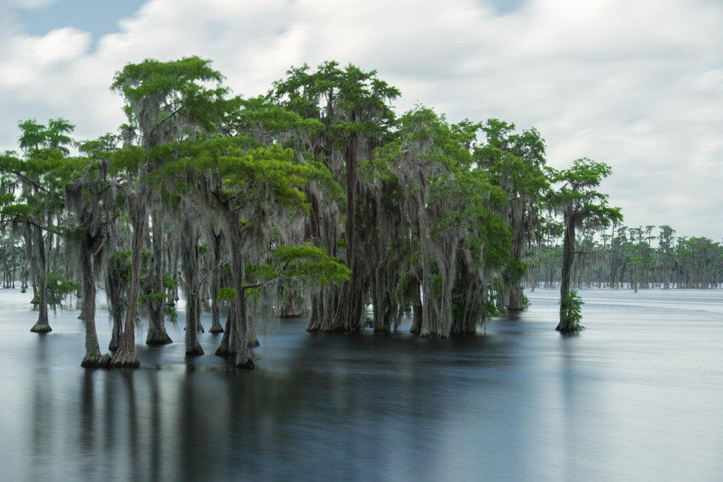 """Floating Dock"" by Scott Wyden Kivowitz"