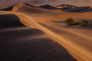 """Sand Dune Forming"" by Michael Liskay"