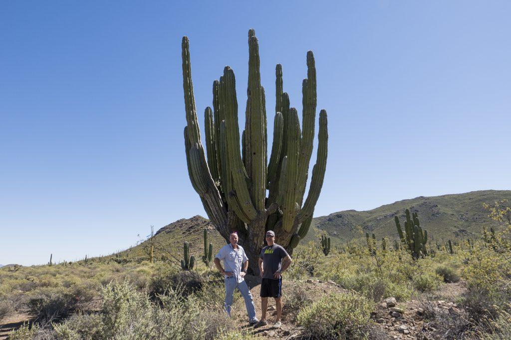 Baja, Todd & Karsten, cactus